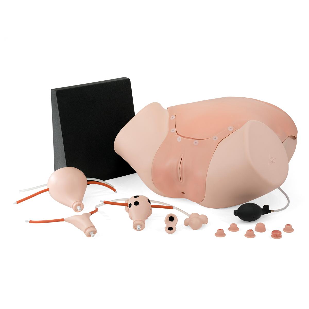 Gynecologic Skills Trainer P91